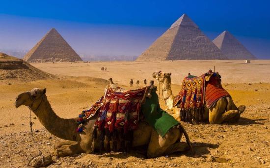 Дикарем в Египет